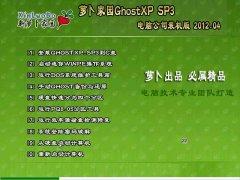 萝卜家园XP系统下载 GHOST XP SP3 电脑城安全装机版